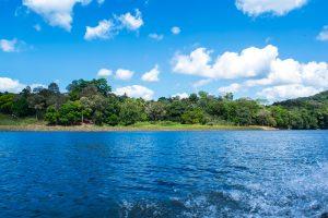 Vue du Parc Chagres depuis une pirogue