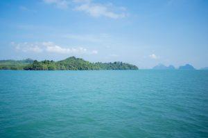 Forêt dans la baie de Phang Nga
