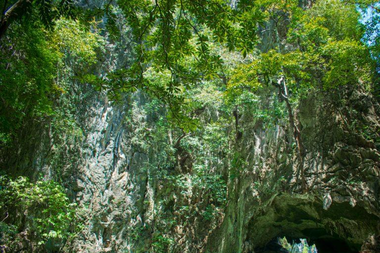 Un décor de verdure dans la baie de Phang Nga en Thaïlande