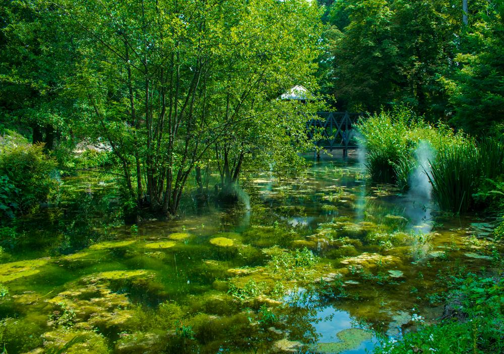 Petit étang au sein du Clos Lucé à Amboise