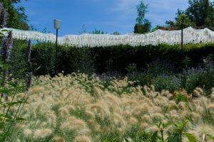 Jardin ressemblant à un champs dans les Jardins de Chaumont